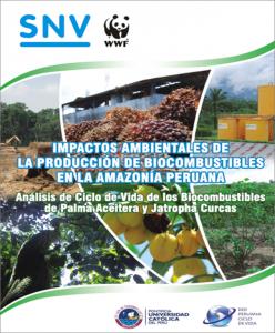 (Español) Analísis de Ciclo de Vida de los Biocombustibles en el Perú